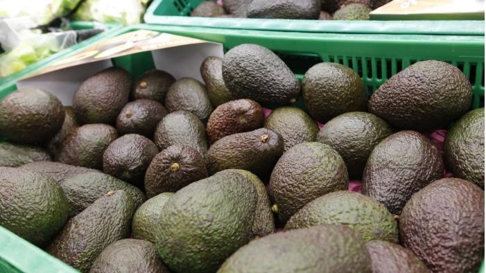 Una jornada informativa abordará la agricultura ecológica como alternativa a tradicional