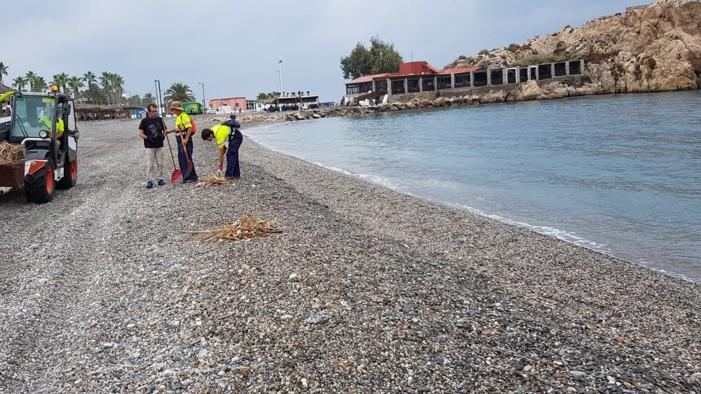 Operarios municipales limpian cañaveras y restos de pesca de las playas de Salobreña de cara al fin de semana